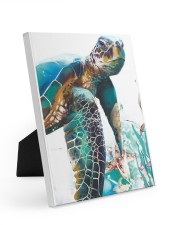 Turtle Art 2606 8x10 Easel-Back Gallery Wrapped Canvas thumbnail