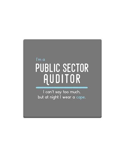 Public Sector Auditor Described
