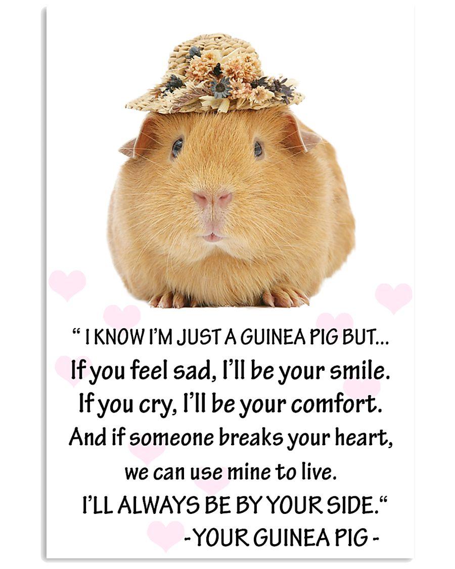 GUINEA PIG 11x17 Poster
