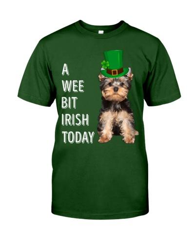 Yorkshire Terrier Irish Today