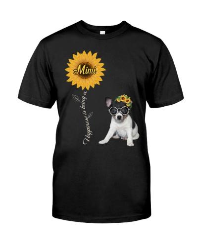 Toy Fox Terrier Mimi Sunshine