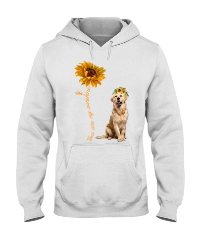 Golden Retriever Dog Sunshine