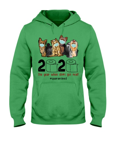 Quarantine 2020 - Yorkshire Terrier