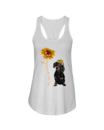 Dacshhund Dog Sunshine1