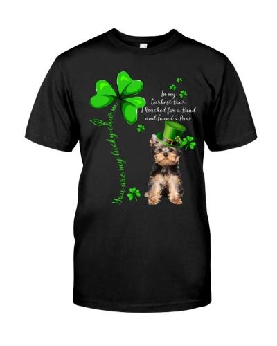 Yorkshire Terrier Love Clover