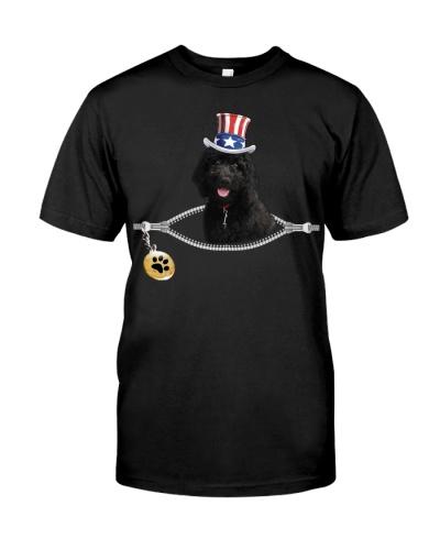 Zip - black goldendoodle