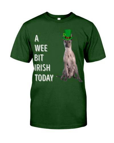 Xoloitzcuintli Irish Today