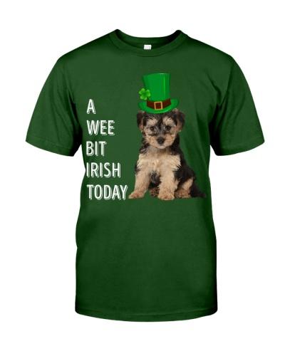 Yorkipoo Irish Today