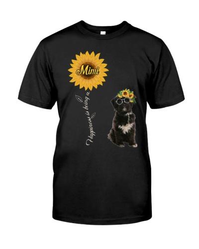 Tibetan Terrier Mimi Sunshine1