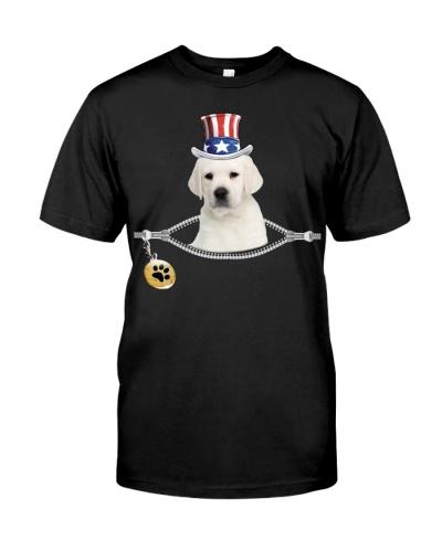 Zip - White Labrador