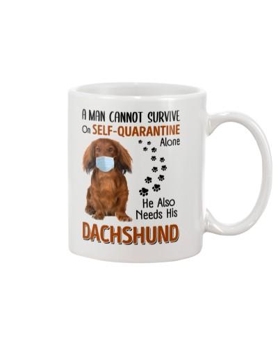 A Man Self-Quarantine With Red Dachshund
