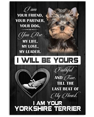 Love Yorkshire Terrier Poster
