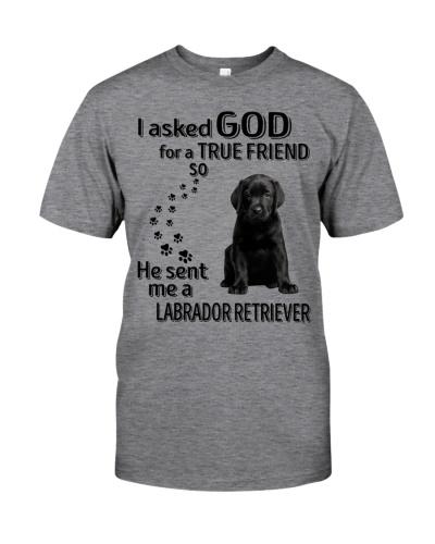 Labrador Retriever True Friend