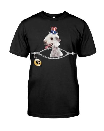 Zip - Bedlington Terrier