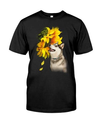 Sunflower Husky