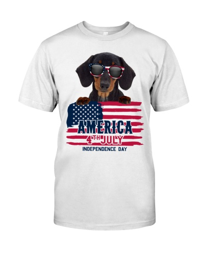 america 4th july - Dachshund