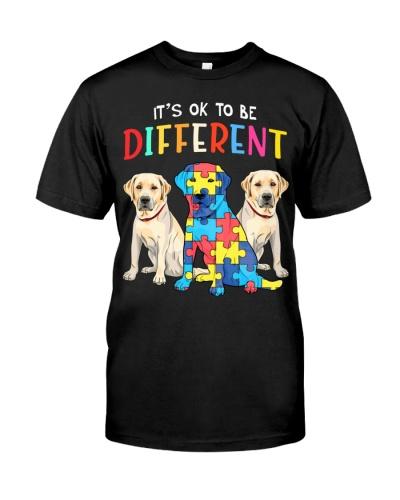 Different Autism Labrador