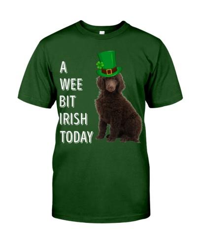 White Pekingese Irish Today