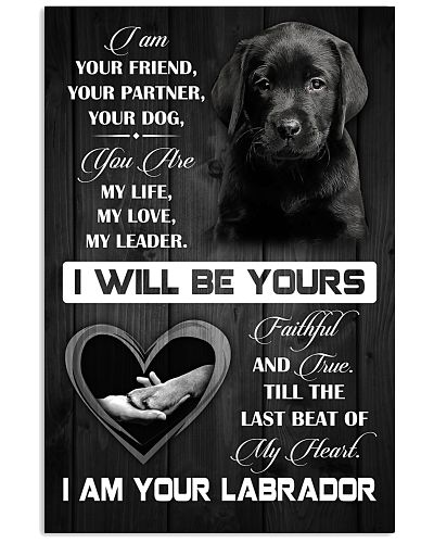 Love Labrador Poster