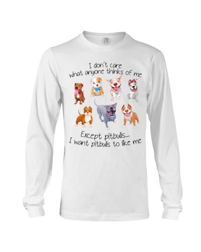 I don't care Pit bull