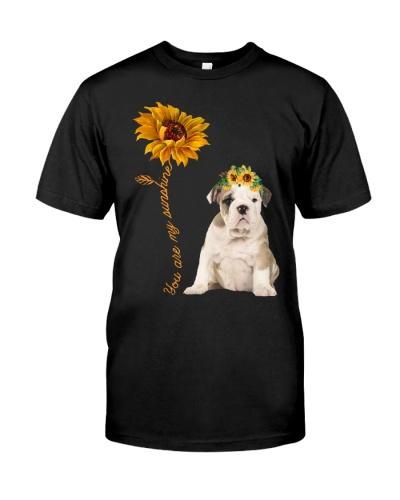 Bulldog Sunshine