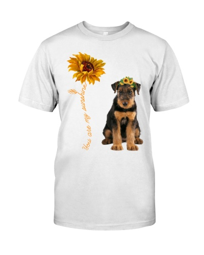 Airedale Terrier Sunshine