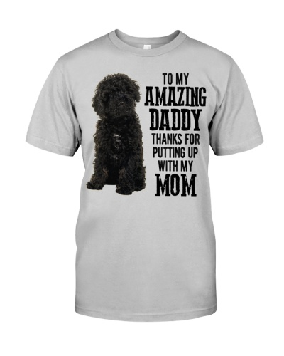 WHite Labradoodle Amazing Daddy