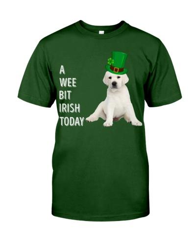 White Labrador Irish Today