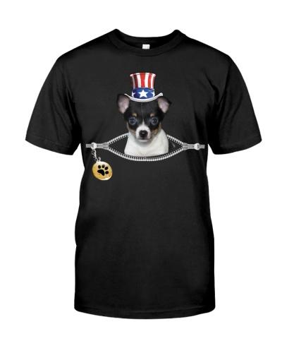 Zip - Toy Fox Terrier
