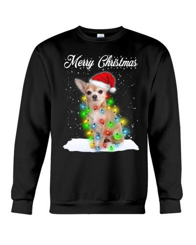 Chihuahua Xmas