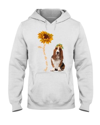 Basset Hound Sunshine