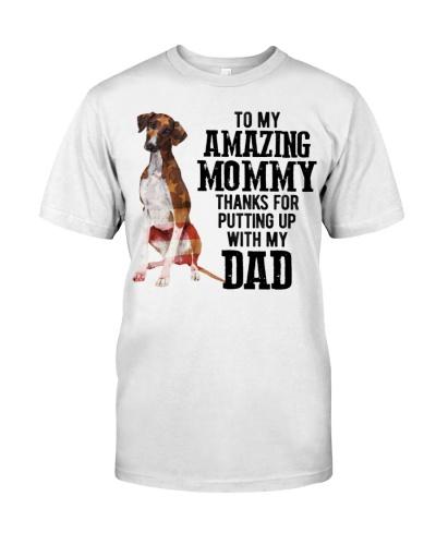 Amazing Mommy - Azawakh
