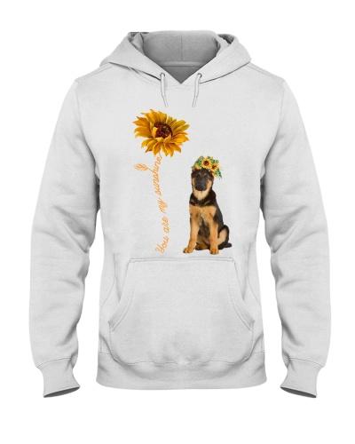 German Shepherd Dog Sunshine