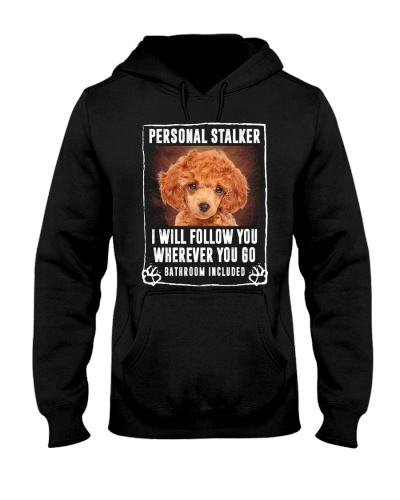 Red Toy Poodle - Personal Stalker