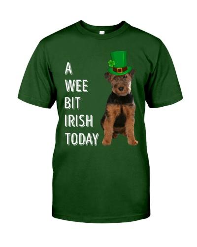 Welsh Terrier Irish Today