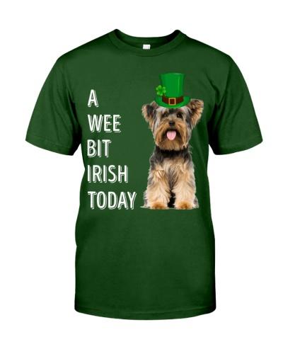 Yorkshire Irish Today