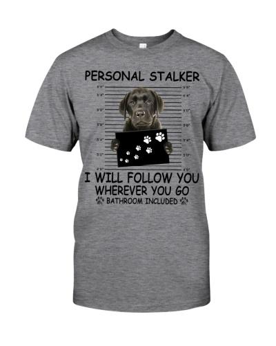 Personal Stalker Labrador Retriever