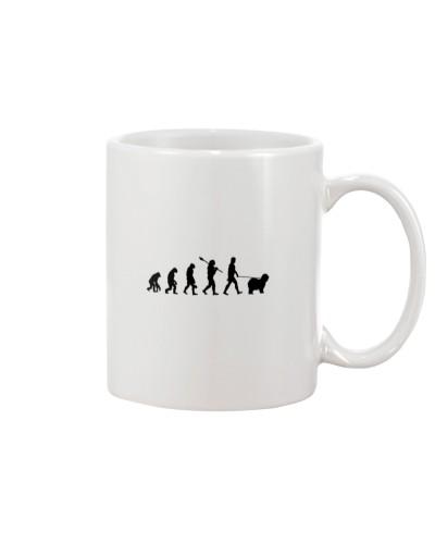 Evolution To - English Sheepdog