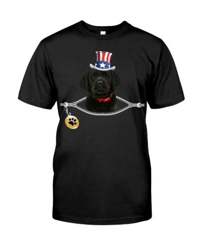 Zip - Black Goldador