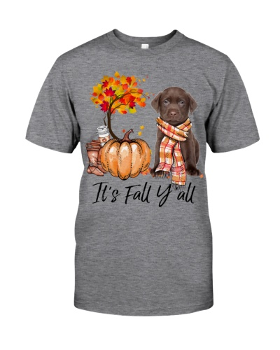It is Fall - CHOCOLATE labs