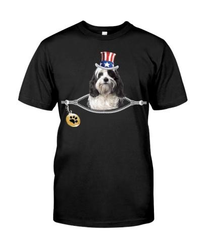 Zip - Tibetan Terrier