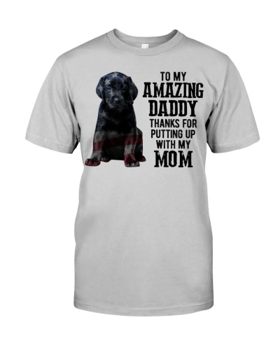 Amazing Daddy - Black Labrador