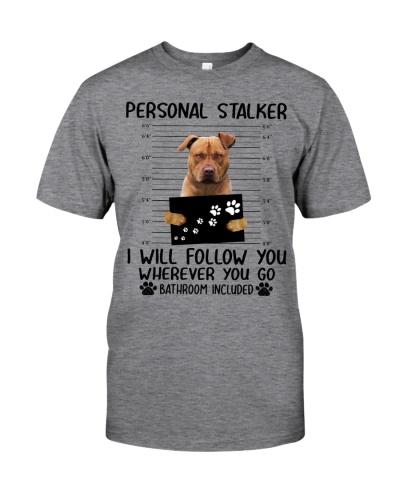 Pitbull - Personal stalker