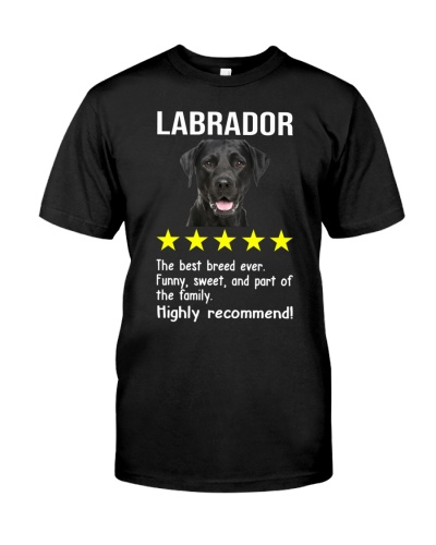Labrador 5 stars
