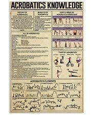 ACROBATICS 24x36 Poster front