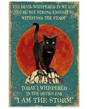 Cat I Am Storm 11x17 Poster front