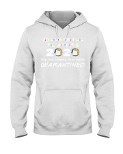 Volleyball Player 2020 The one where they were  Hooded Sweatshirt thumbnail