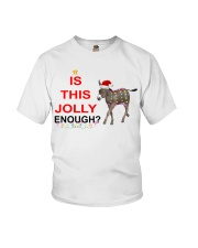 Is this Jolly enough donkey Christmas shirt Youth T-Shirt thumbnail