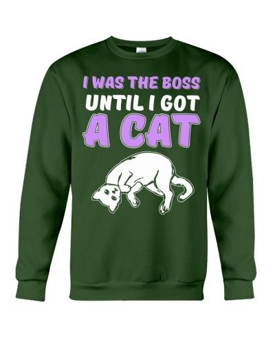I got A Cat