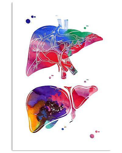 Anatomical Liver